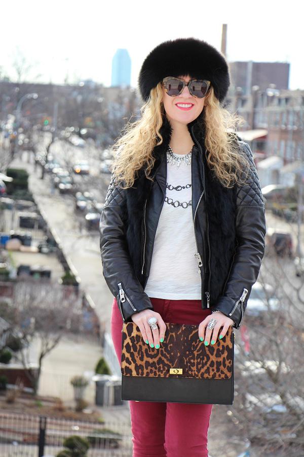 Leopard Love 5 Leopard Love