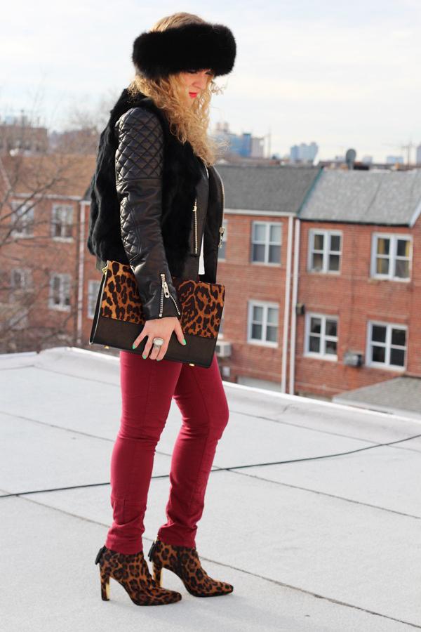 Leopard Love Leopard Love